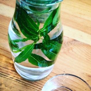 kitchen garden eau detox
