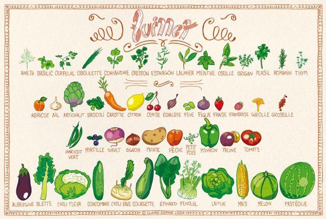 légumes et fruits de saison juillet