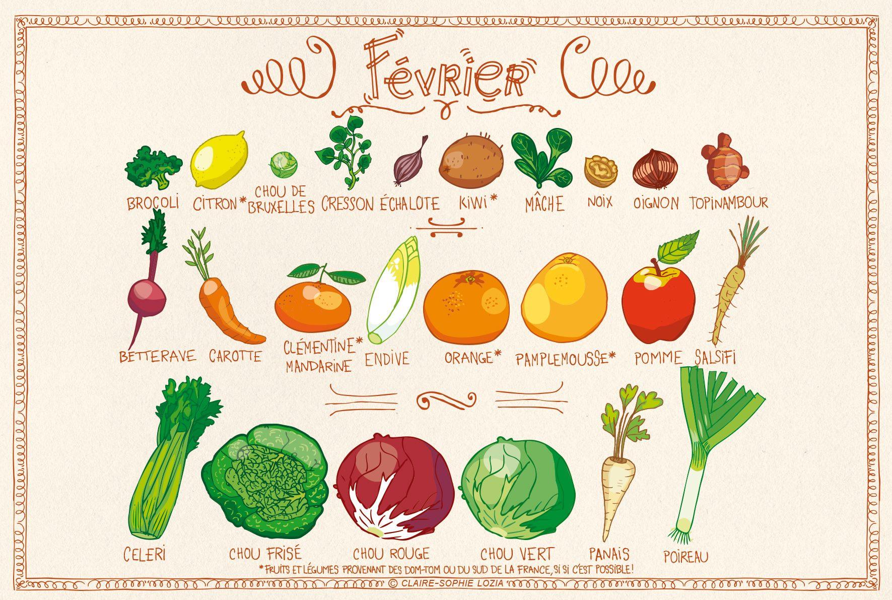 fruits et légumes février saison