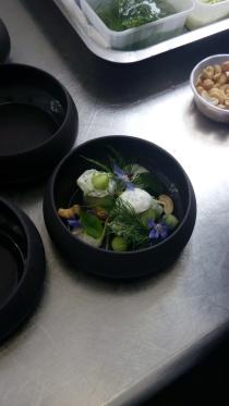 Tzatziki et alginate, branche de fenouil, bourrache, cajou