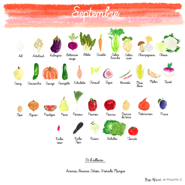fruits-et-legumes-septt