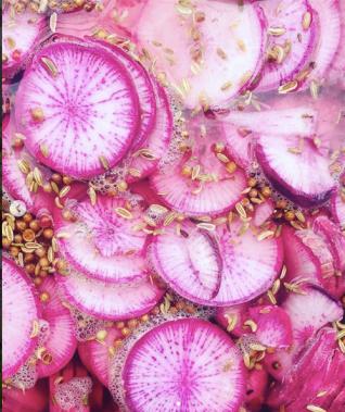 recette de pickles HILDS BAUER